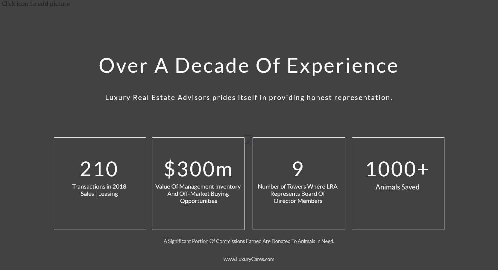 Luxury Real Estate Advisors Experience (2)