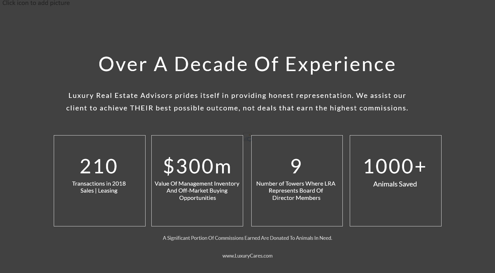 Luxury Real Estate Advisors Experience